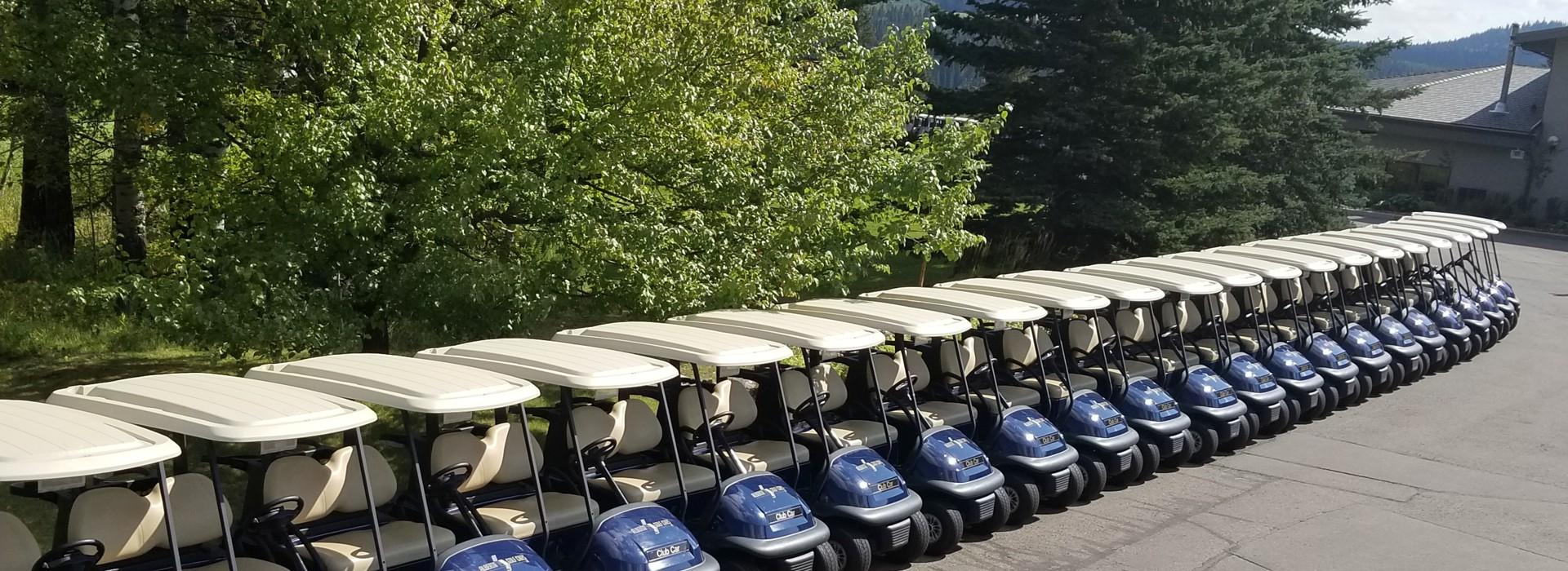 golf car cart rentals calgary alberta golf car rental. Black Bedroom Furniture Sets. Home Design Ideas